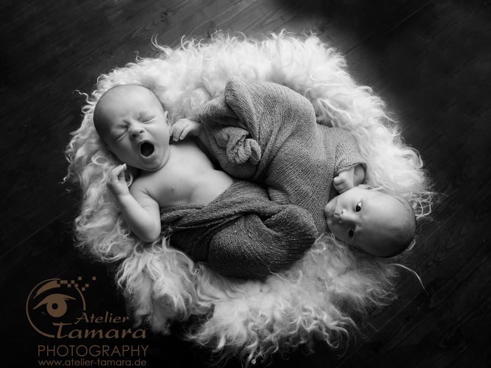 Babyfotos Stuttgart Zwillinge Atelier Tamara